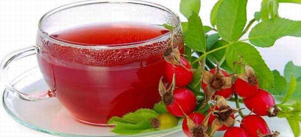 Отвар из шиповника при лечении панкреатита: как приготовить и пить напиток?