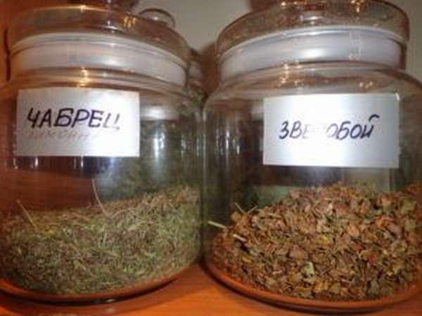 Для повышения потенции в некоторых странах употребляли пряную зелень: зверобой и чабрец