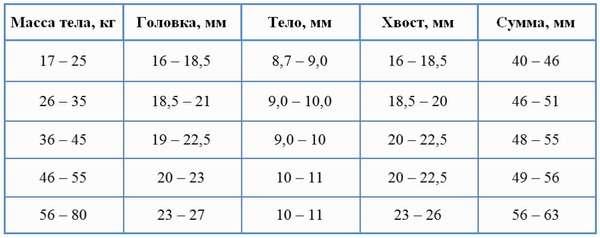 Таблица: зависимость размера поджелудочной ребёнка от массы тела