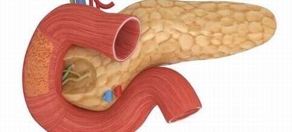 Классификация опухолей поджелудочной железы