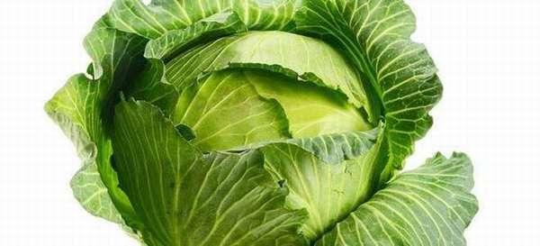 Можно ли при панкреатите есть капусту