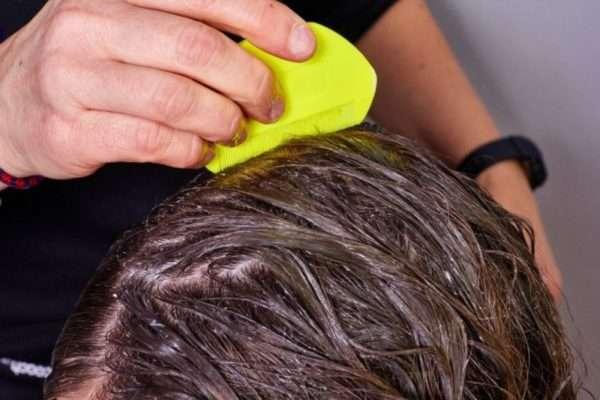 Механизм уничтожения вшей в процессе окрашивания волос