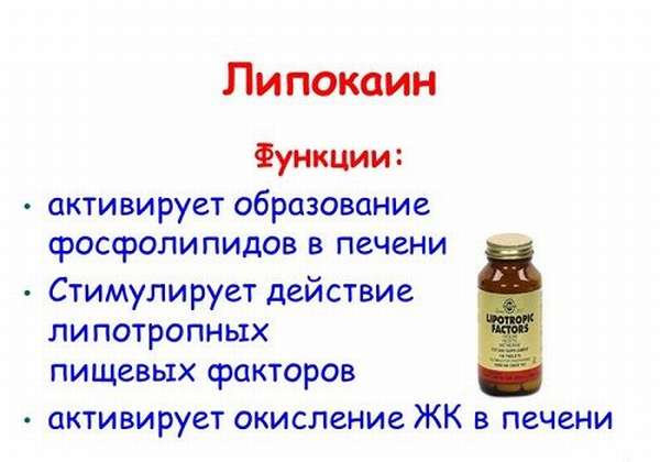 Функции липокаина