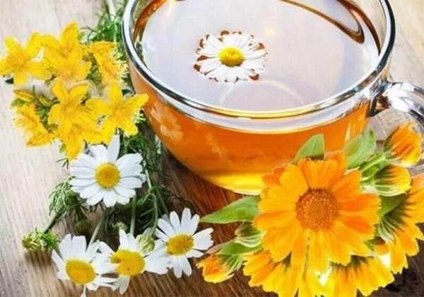 Отвар из цветков календулы и ромашки