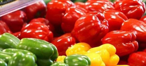Какие блюда можно приготовить из болгарского перца при панкреатите?