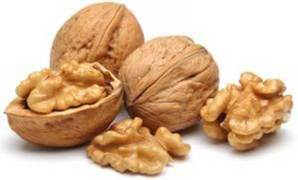 Грецкие орехи используют в качестве профилактики для увеличения активности сперматозоидов