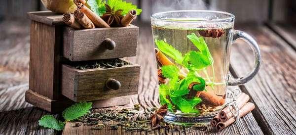 Состав и методы лечения панкреатита Монастырским желудочным чаем