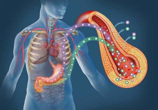 развитие панкреонекроза