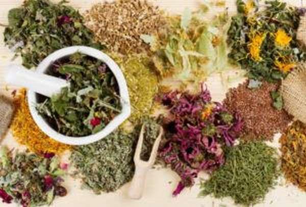 сборы лекарственных растений