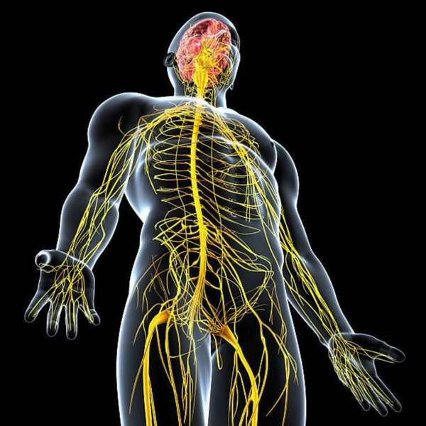 Трудности лечения нервной экземы