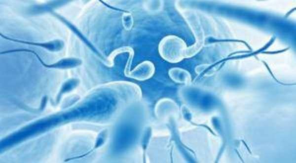 улучшает качество спермы